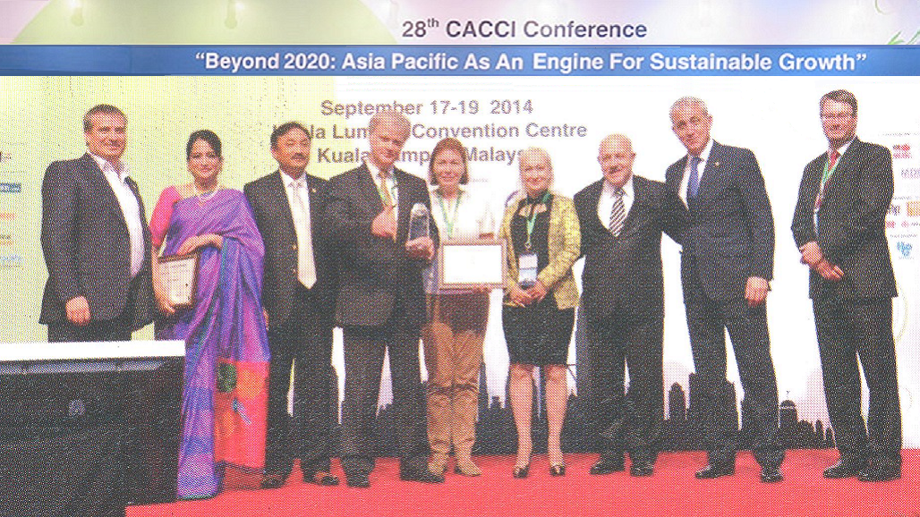 2014 chamber award russia large